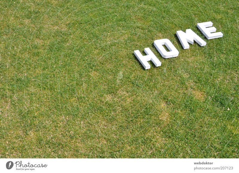 Home Sweet Home Grass Sign Characters Bright Colour photo Deserted Copy Space left Letters (alphabet) Lawn Drought Dry White Green Exterior shot