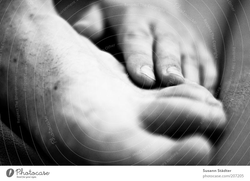 feel good. Man Adults Skin Hand Feet 1 Human being Natural Barefoot Men`s feet Mole Black & white photo Close-up Detail Shallow depth of field Naked flesh Itch