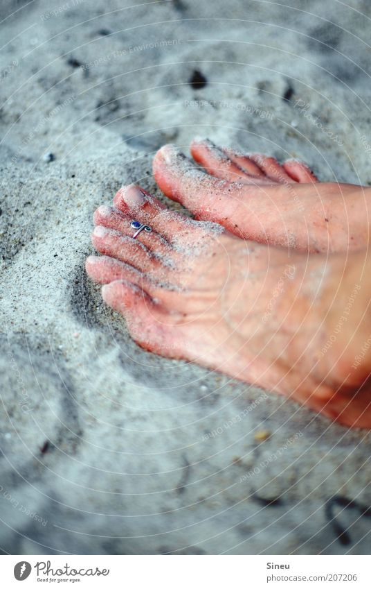 Feet in the sand Sand sand flea Touch Relaxation Sit Contentment Beach Sandy beach Ring Women`s feet Tanned Colour photo Exterior shot Copy Space top