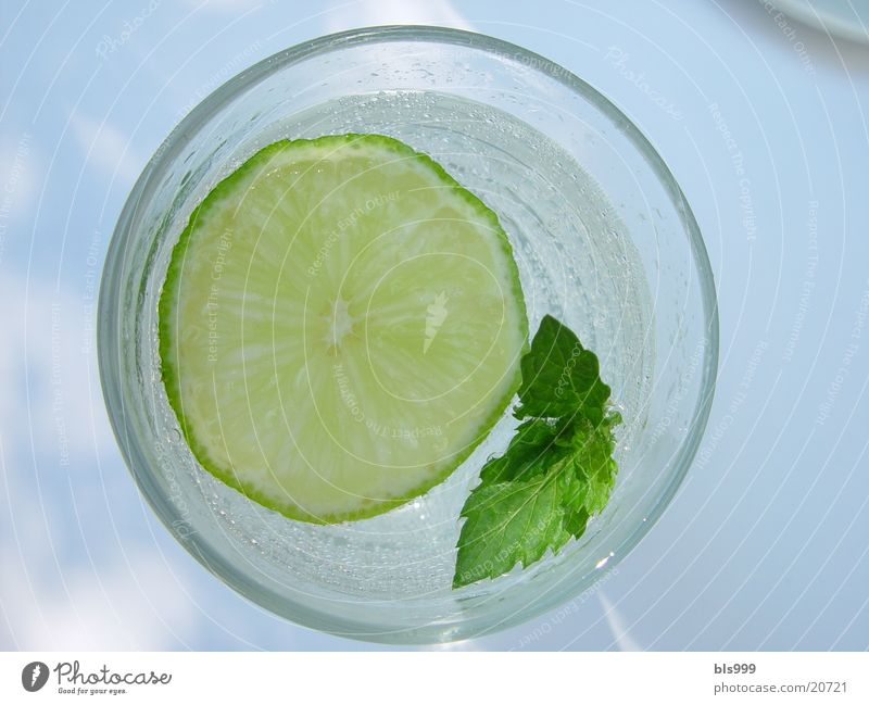 Cold Beverage Alcoholic drinks Lime Mint
