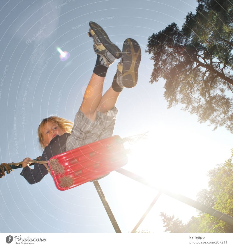 Human being Child Nature Sun Red Joy Boy (child) Playing Garden Leisure and hobbies Infancy Toys Swing Playground Blue sky Back-light