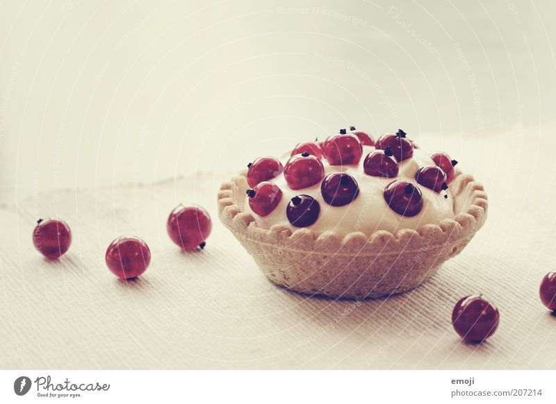White Red Small Cake Fruit Sweet Round Gateau Delicious Appetite Baked goods Berries Dessert Redcurrant Tartlet