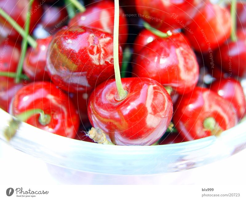 Red Summer Healthy Fruit Cherry Picked