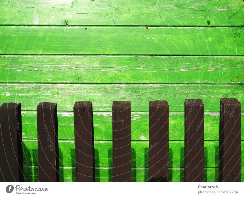 Board hedge Garden Wooden fence Simple Brown Green Line Lined Wooden board Shadow Wood grain Flake off Multicoloured Exterior shot Close-up Deserted Day