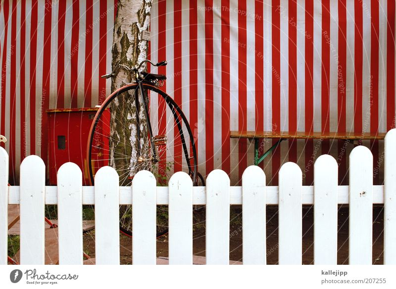 Old White Red Vacation & Travel Style Art Bicycle Elegant Trip Lifestyle Stripe Shows Retro Bench Culture Fence