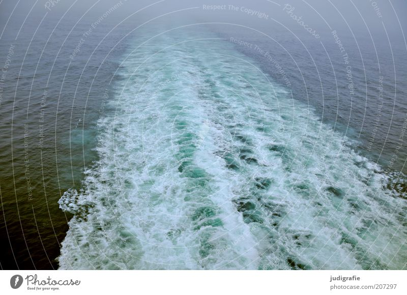 voyage Environment Nature Water Waves Ocean Atlantic Ocean Transport Means of transport Navigation Passenger ship Cold Wild Moody Loneliness Discover Speed