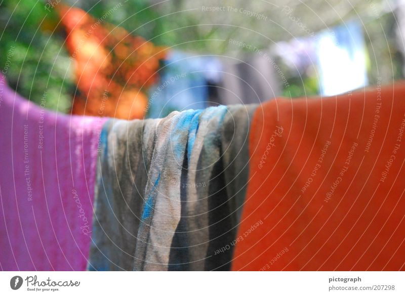 Summer Colour Calm Clean Beautiful weather Hang Laundry Dry Towel Clothesline
