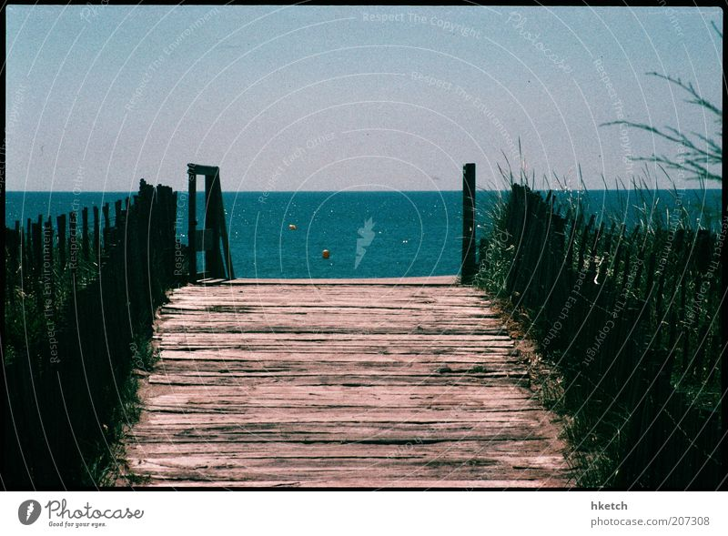 Water Ocean Summer Vacation & Travel Happy Lanes & trails Warmth Coast Romance Leisure and hobbies Longing Footbridge Fence Dune Beautiful weather Wanderlust