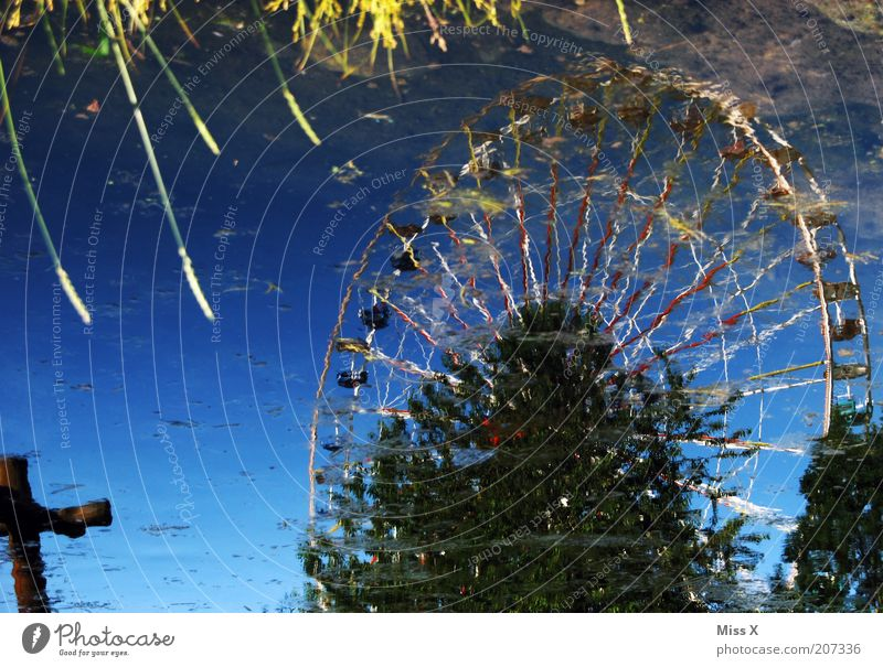 bank Feasts & Celebrations Fairs & Carnivals Nature Water Park Lakeside Pond Glittering Ferris wheel Puddle Mirror image Colour photo Multicoloured