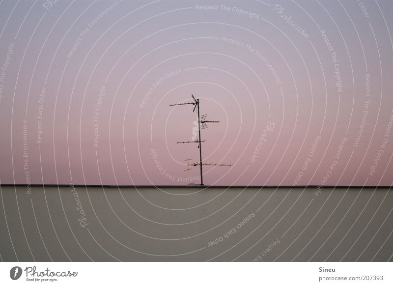 Summer Calm Above Dream Air Pink Environment Roof Violet Pure Beautiful weather Antenna Stagnating Archaic Electrical equipment Color gradient