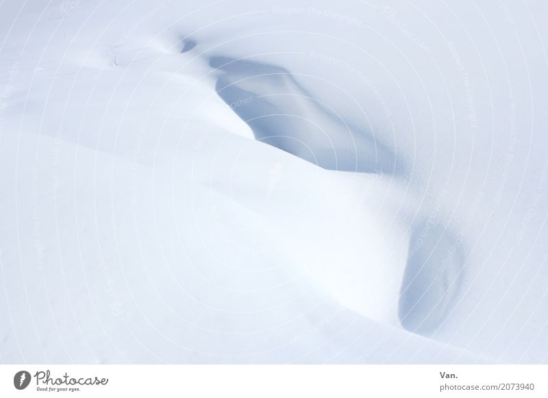 snowdrift Nature Winter Snow Snowfall Cold White Snowdrift Colour photo Subdued colour Exterior shot Detail Deserted Copy Space left Copy Space right