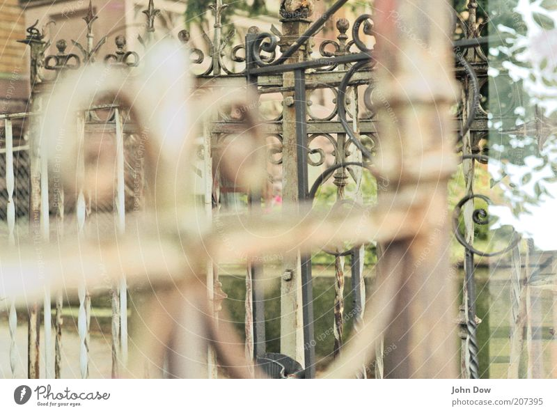 latticed Garden door Gate Grating Ornament Entrance Main gate Border Fence Double exposure Muddled Iron Blur Wrought iron Decoration Curlicue Iron gate