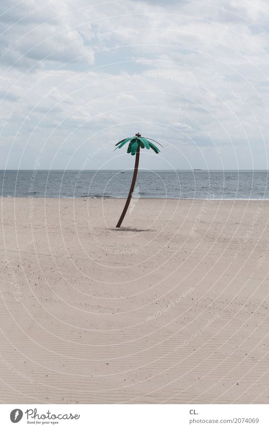 fake palm tree Vacation & Travel Tourism Summer vacation Beach Ocean Island Waves Environment Nature Landscape Elements Sand Water Sky Clouds Climate