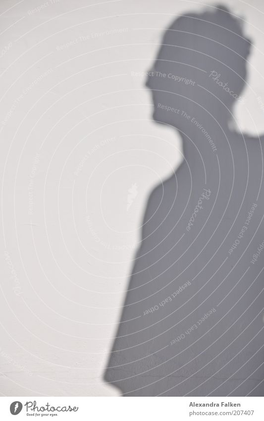 Shadow of woman 1 Human being Gray Profile Pinned up hairstyle Summer Exterior shot Copy Space left Silhouette Sunlight Upper body Shadowy existence Dark side