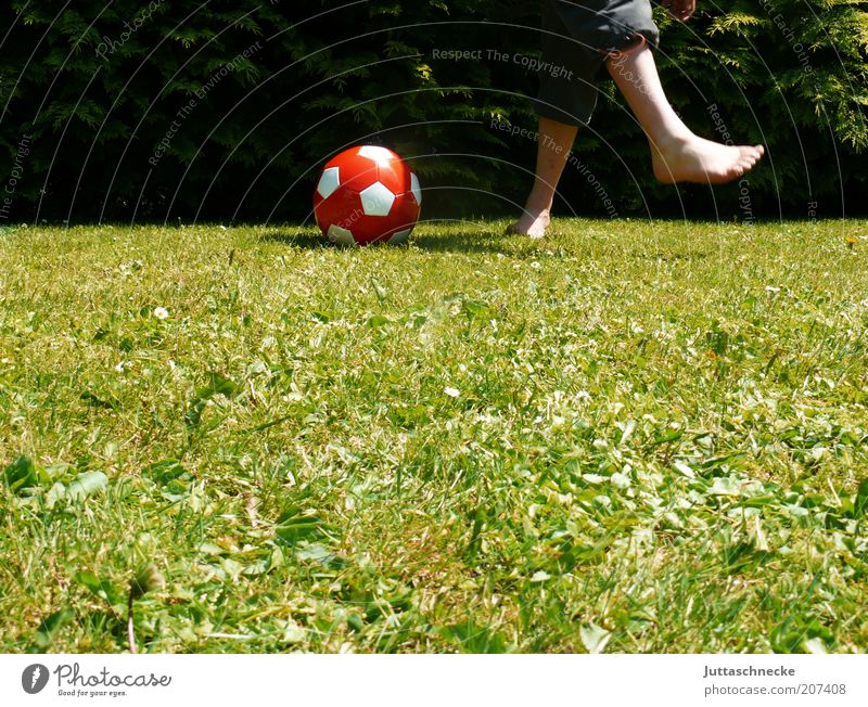 Human being Youth (Young adults) Summer Joy Meadow Sports Playing Boy (child) Movement Garden Legs Feet Infancy Leisure and hobbies Walking Soccer