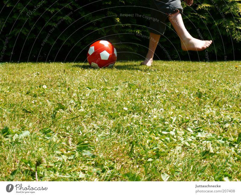 Newtonian tangent method ... Garden Sports Ball sports Soccer Foot ball Tread Human being Masculine Boy (child) Infancy Legs Feet 1 Summer Meadow Movement