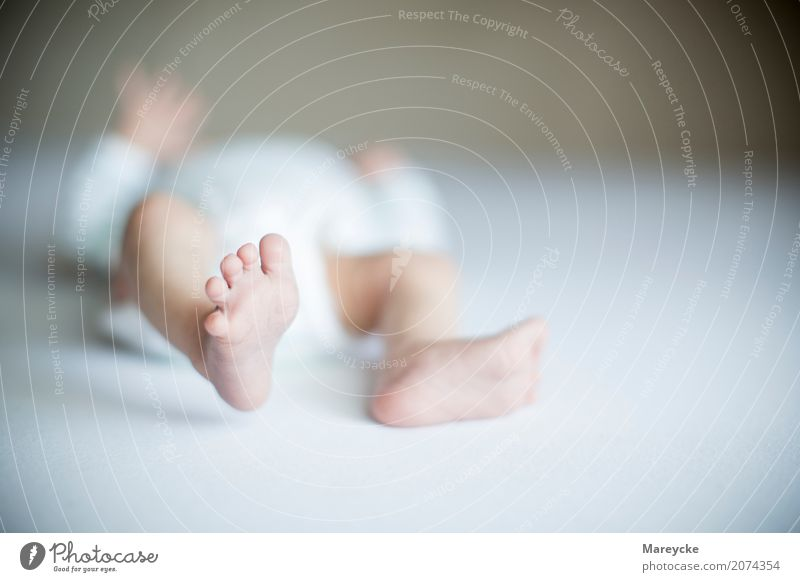 baby foot Human being Baby Infancy Feet Responsibility Contentment Colour photo Interior shot Copy Space right Day Blur