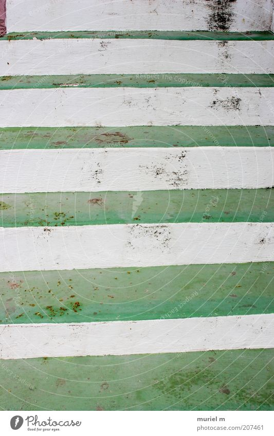 upstairs Stairs Stripe Tall Green White Symmetry Stone steps Dirty Section of image Contrast Alternating Upward Colour photo Exterior shot Detail Abstract