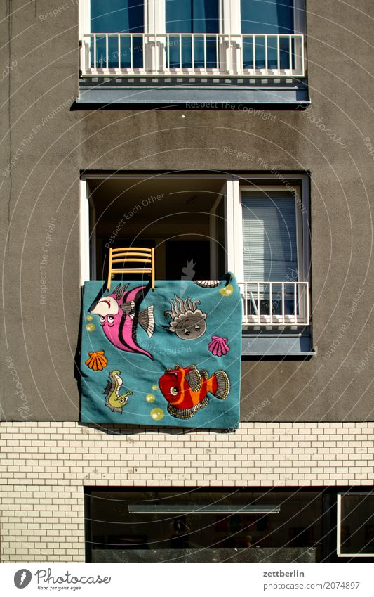 Find Nemo! Facade Window House (Residential Structure) Downtown Wall (barrier) Apartment house Deserted Town house (City: Block of flats) Copy Space