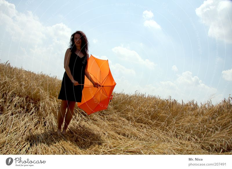 patron Feminine Woman Adults Environment Nature Summer Field Dress Umbrella Long-haired Wait Thin Black Happy Contentment Cornfield Summery Warmth Orange