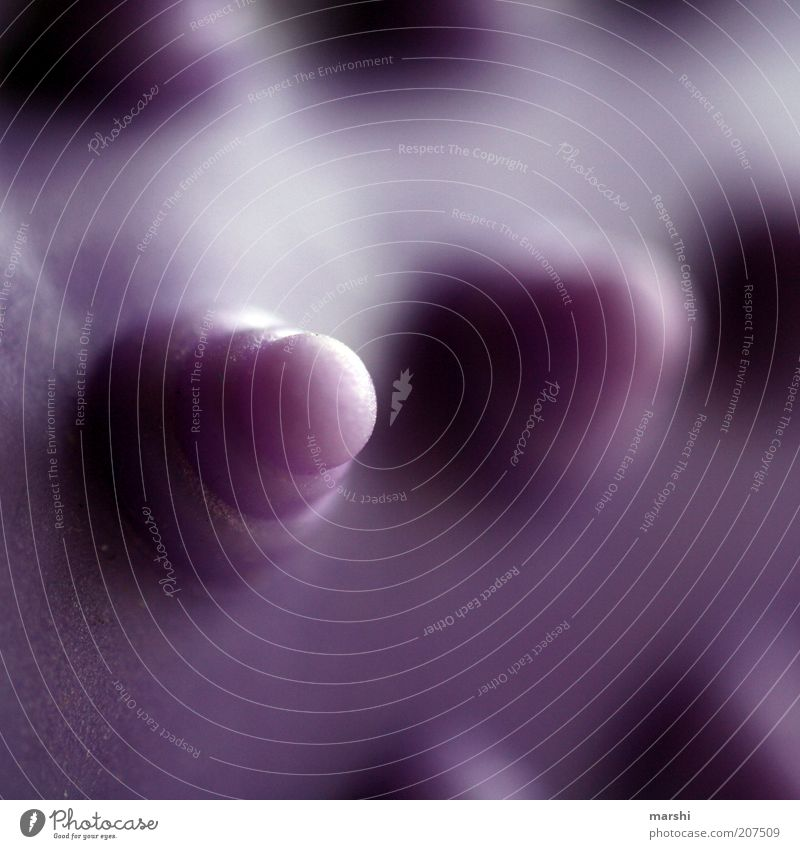 my name is Noppe Beautiful Personal hygiene Violet Burl Structures and shapes Round Massage Massage brush Abstract Things Colour photo Blur