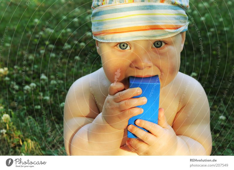 Human being Child Blue Green Beautiful Summer Meadow Nutrition Playing Naked Eating Infancy Baby Stripe Cute Toys
