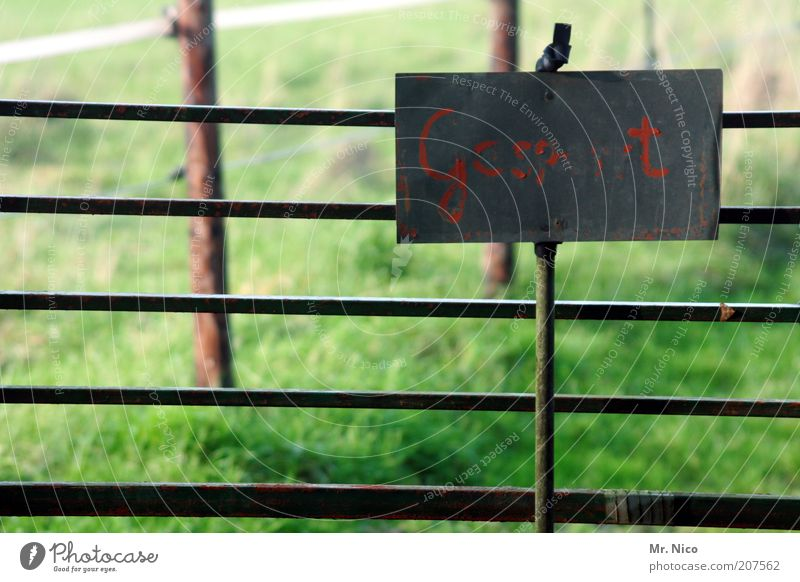 Nature Old Green Red Meadow Grass Signs and labeling Safety Arrangement Characters Letters (alphabet) Derelict Signage Pasture Fence Barrier