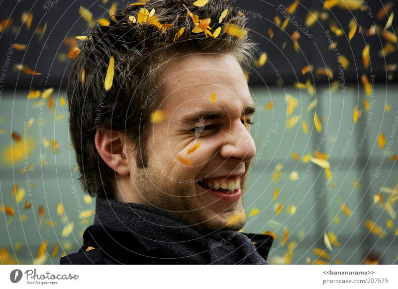 All the leaves are yellow Hair and hairstyles Face Harmonious Masculine Young man Youth (Young adults) Man Adults Head 18 - 30 years Autumn Wind Smiling
