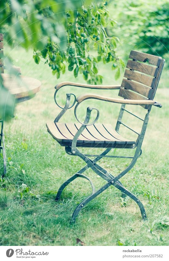 Nature Green Summer Calm Relaxation Style Garden Park Elegant Environment Empty Fresh Esthetic Break Chair Harmonious