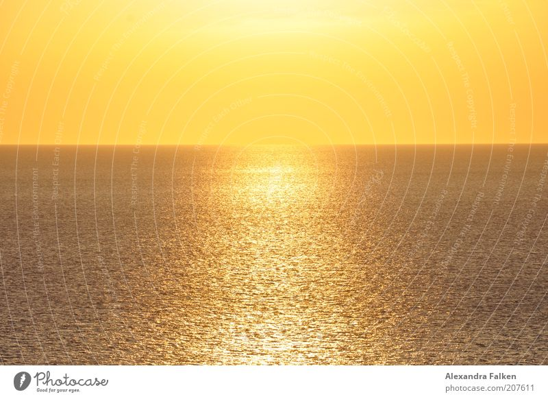 Sun meets sea. Harmonious Calm Far-off places Summer Ocean Infinity Warmth Yellow Gold Apocalyptic sentiment Orange Colour photo Exterior shot Deserted Evening