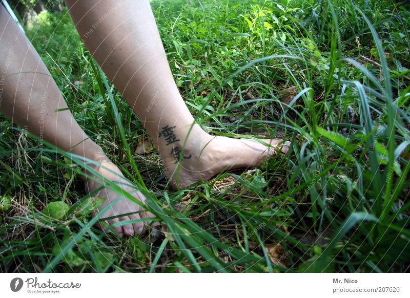 reiki Well-being Contentment Relaxation Calm Skin Legs Feet Grass Meadow Tattoo Green Barefoot Reiki Calf Toes Woman's leg Healthy Spirituality