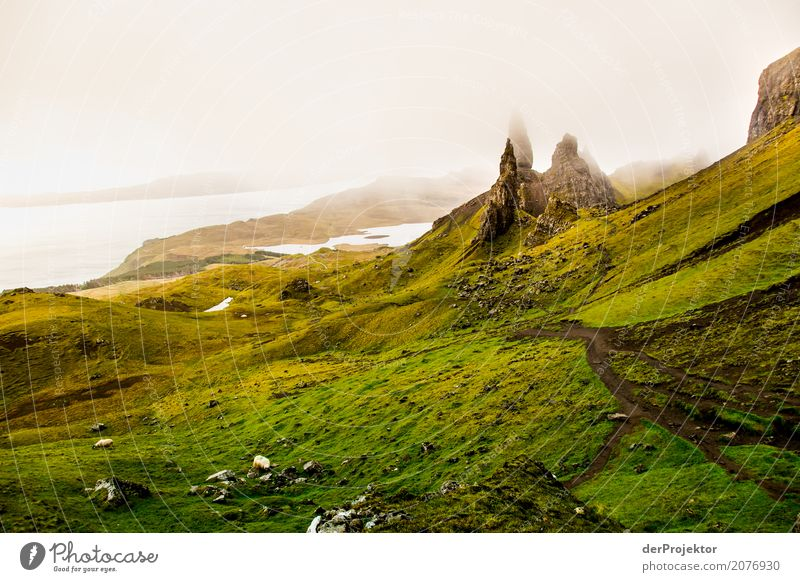 Old Man of Storr 1 Vacation & Travel Tourism Adventure Far-off places Freedom Camping Mountain Hiking Environment Nature Landscape Plant Summer Bad weather Fog