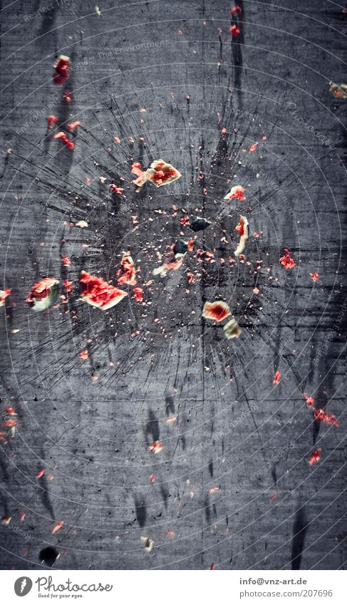 Red Movement Gray Stone Food Concrete Fruit Speed Sweet Broken Anger Force Patch Plant Aggravation Aggression