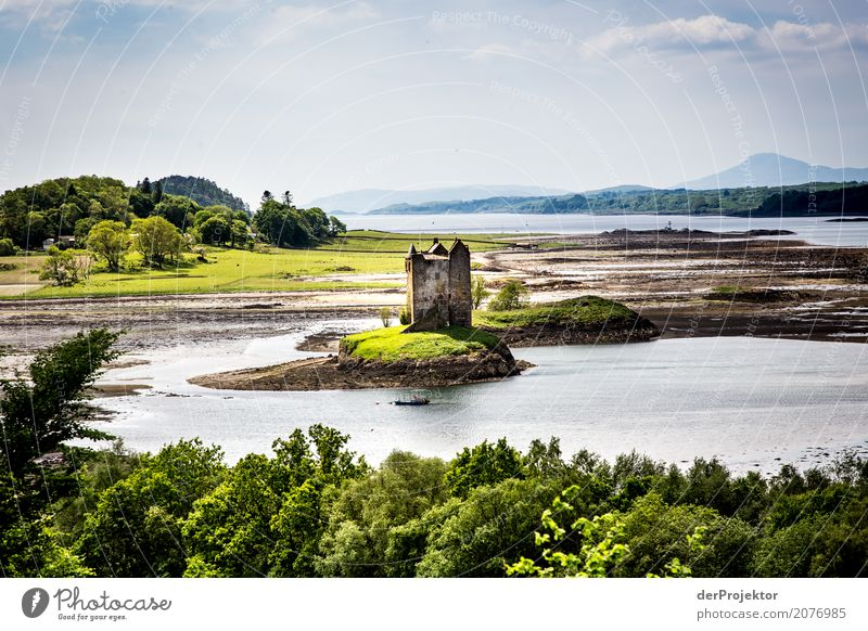 Small, but fine: Scottish Castle Vacation & Travel Tourism Trip Adventure Far-off places Freedom Hiking Environment Summer Beautiful weather Hill Rock Waves