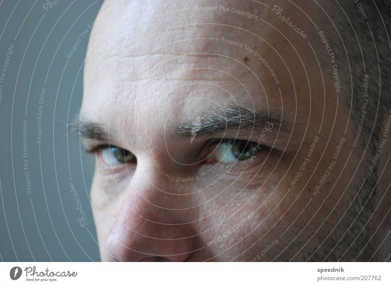 Human being Man Blue Calm Eyes Cold Gray Hair and hairstyles Adults Think Masculine Cool (slang) Wrinkle Serene Bald or shaved head Self-confident