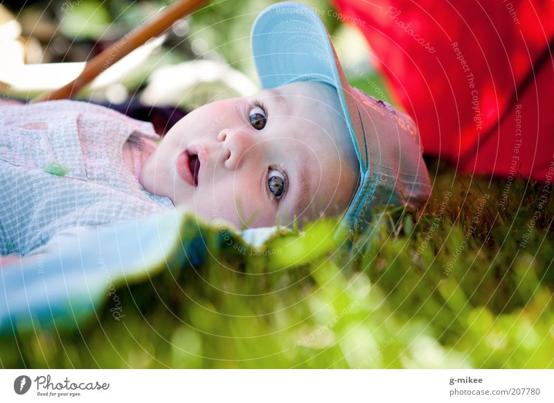 Human being Child Beautiful Summer Relaxation Emotions Small Happy Natural Bright Head Lie Masculine Infancy Baby Cute