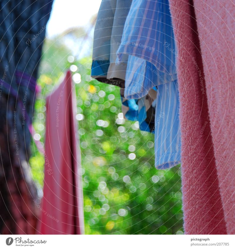 Nature Summer Calm Colour Simple Hang Laundry Dry Towel Clothesline Swimming trunks Action