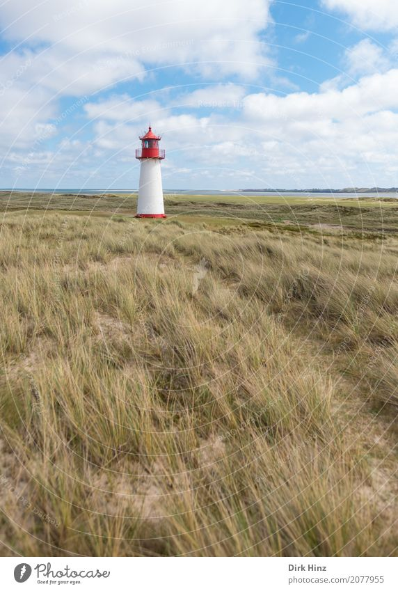 Lighthouse (West) in List on Sylt. Vacation & Travel Tourism Trip Far-off places Freedom Summer Summer vacation Ocean Island Hiking Nature North Sea Maritime