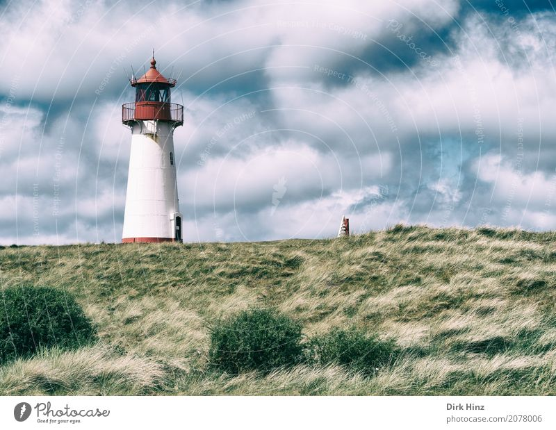 Lighthouse in List on Sylt Vacation & Travel Tourism Trip Far-off places Freedom Sightseeing Summer vacation Ocean Island Nature Water Grass Meadow Coast