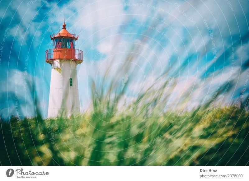 Lighthouse in List on Sylt Vacation & Travel Tourism Trip Far-off places Freedom Sightseeing Summer Summer vacation Sun Ocean Island Nature Water North Sea