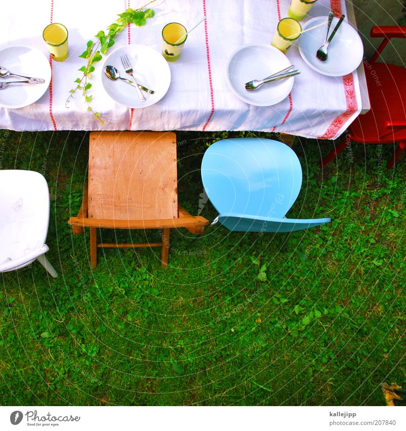 Party Style Grass Garden Happy Feasts & Celebrations Birthday Elegant Table Lawn Chair Leisure and hobbies Jubilee Crockery Event Cup