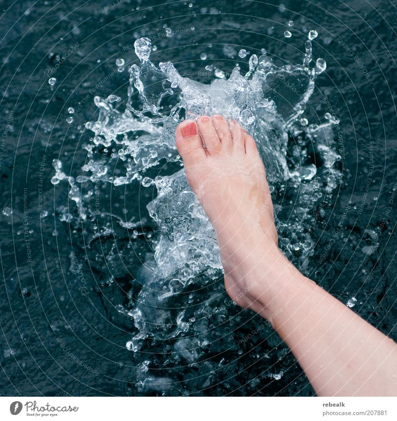 Woman Water Beautiful Summer Life Cold Relaxation Feminine Feet Healthy Drops of water Wet Wellness Swimming & Bathing Cosmetics