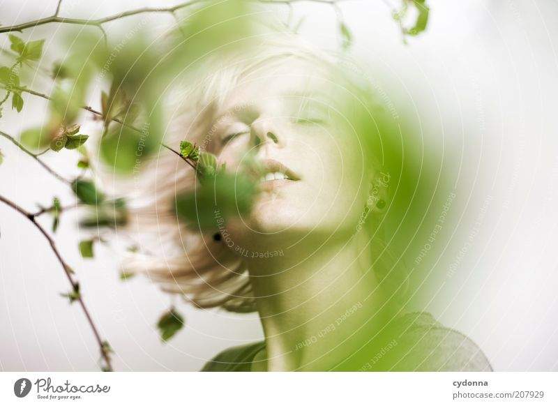 Human being Nature Youth (Young adults) Beautiful Plant Leaf Calm Face Relaxation Life Movement Spring Dream Adults Healthy
