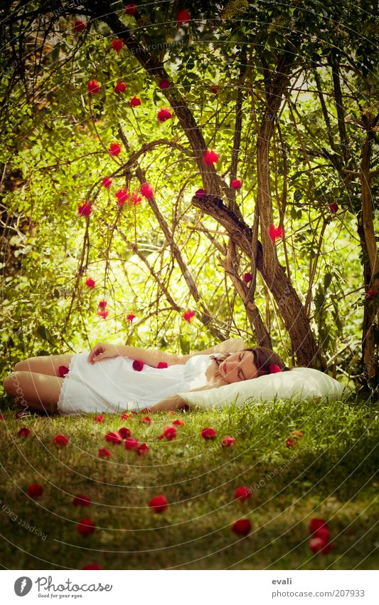shower of roses Human being Feminine Young woman Youth (Young adults) Woman Adults 1 18 - 30 years Tree Grass Bushes Rose Garden Park Lie Sleep Dream Green Red