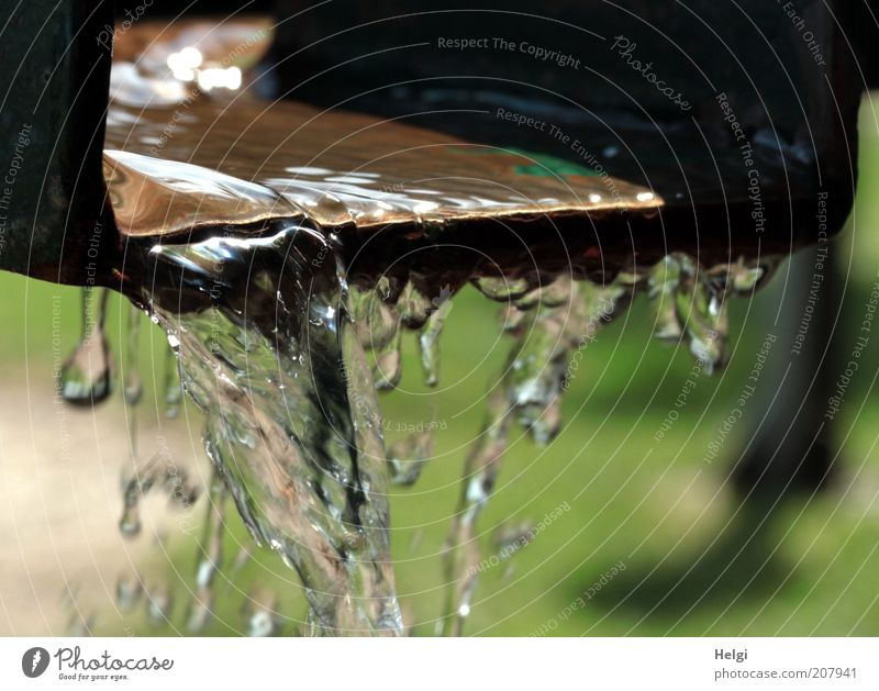 Water Green Life Movement Brown Metal Glittering Wet Speed Fresh Drinking water Esthetic Drop Simple Clean Pure