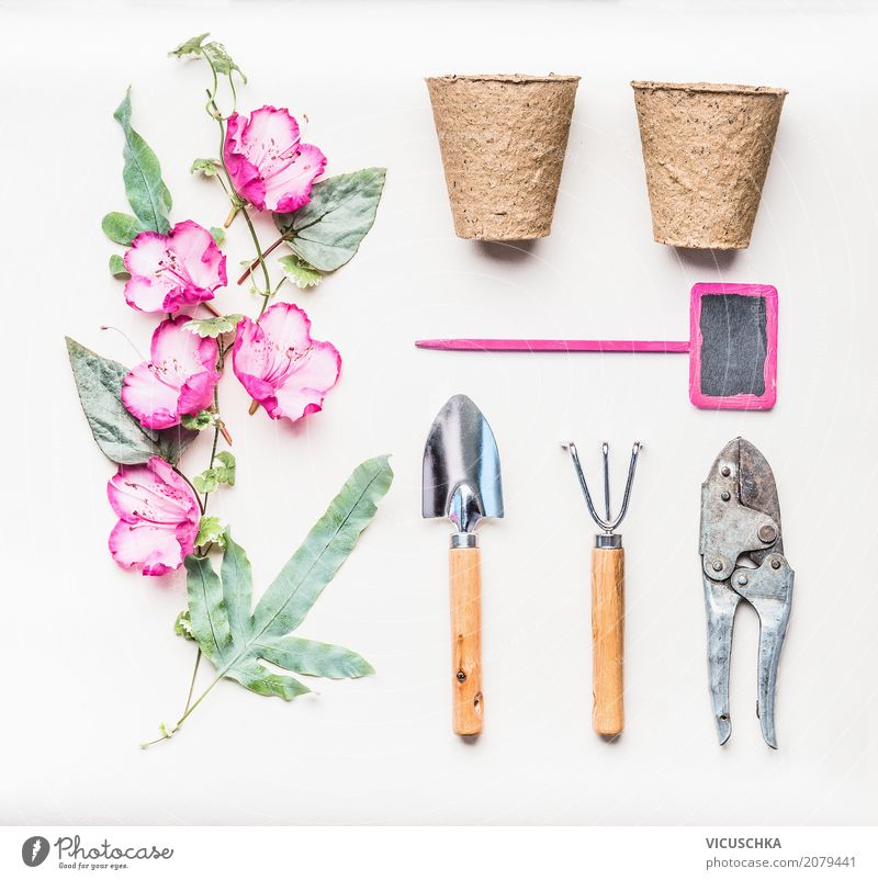 Pink Garden Hand Tools Set Lifestyle Style Design Joy Leisure and hobbies Summer Living or residing Nature Plant Flower Leaf Blossom Decoration Bouquet Ornament