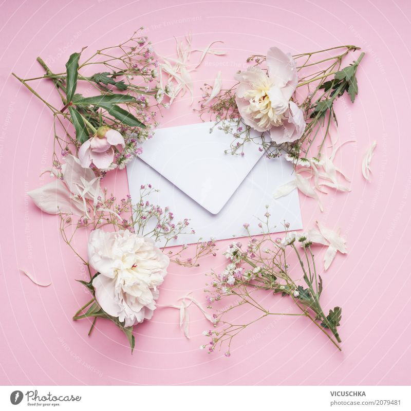 Envelope with white flowers on pink background Lifestyle Elegant Style Design Summer Feasts & Celebrations Valentine's Day Mother's Day Wedding Birthday Plant