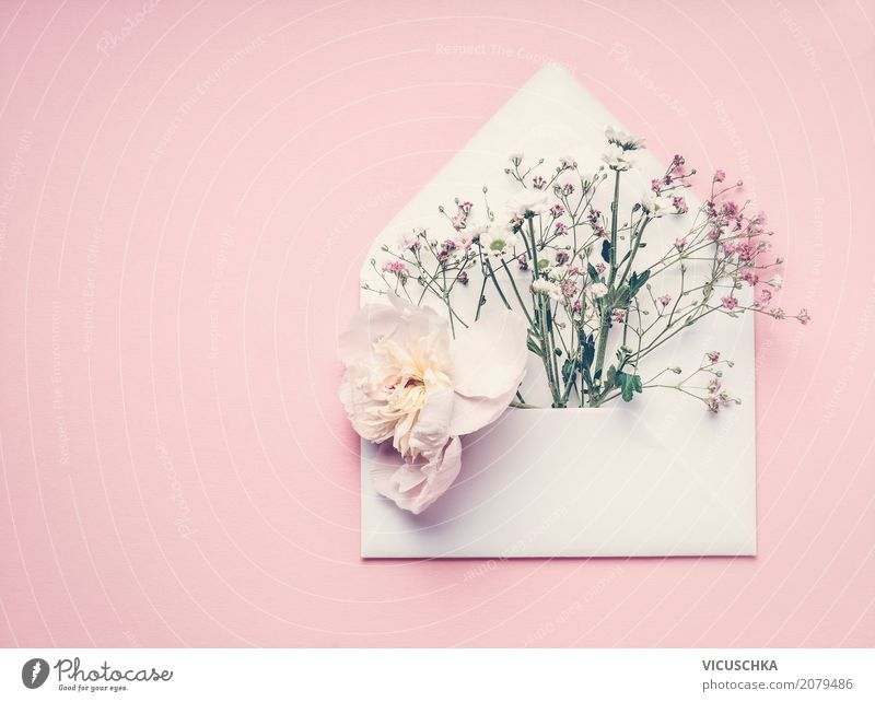 Open envelope with flowers Lifestyle Style Design Decoration Feasts & Celebrations Valentine's Day Mother's Day Wedding Birthday Feminine Nature Plant Paper