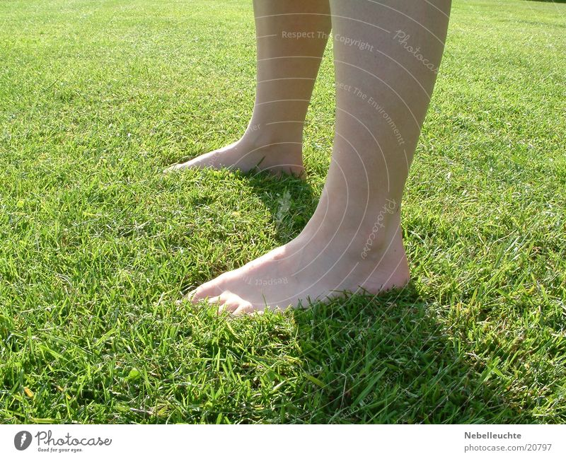 Nature Vacation & Travel Meadow Grass Feet