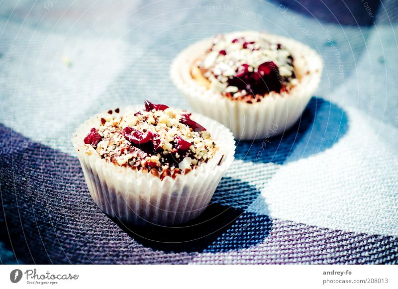 muffins Food Cake Dessert Candy Tartlet Nutrition Delicious Sweet Blue Brown Red Appetite Muffin Sunlight Checkered Pattern Cloth Berries 2 Shadow Colour photo